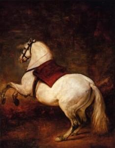 horseraine